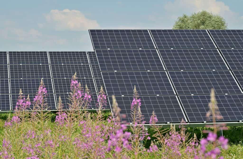 Hoe kies je het juiste zonnepaneel?